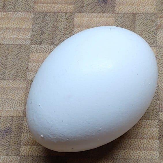 A close up of a egg