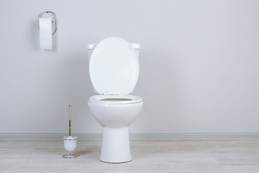 Pristing restroom with white toilet and toilet brush